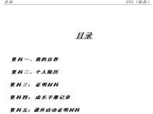 2013小升初简历模板下载之三
