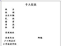 2013小升初简历模板下载之四